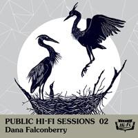 Dana Falconberry Palmless (Ft. Jim Eno) Artwork