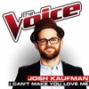 Josh Kaufman - I Can't Make You Love Me (The Voice Performance)