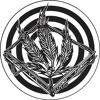 Vandal & Cham - Don't Forget Your Roots (Kaotik 09)