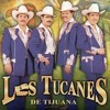 Los Tucanes De Tijuana La Piñata