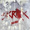 Skrillex & The Doors - Breakn a Sweat