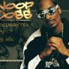 Robin Thicke - Snoop Dogg - Sharooz - Blurred Lines (Dj Tolunay Tek Remix )
