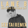 Lane 8 feat. Lucy Stone- Nothing You Can Say (SEE TAI Remix)