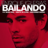 ENRIQUE IGLESIAS ft. SEAN PAUL - Bailando (WILLY WILLIAM REWORK)