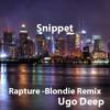 Rapture - (Blondie  Remix Snippet)
