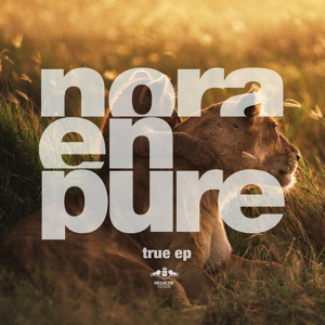 Let The Light In (Original Mix) by Nora En Pure