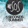 Voodoo Doll (One Mic, One Take) - 5SOS