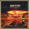 Damian Marley - Road To Zion ( EFIX & XKAEM Cover )