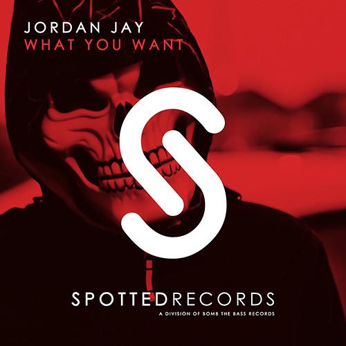 Jordan Jay - What You Want (Original Mix)