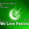 Dil Dil Pakistan Cover - Azadi Song By Sabeeh & Shaji