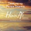 Henri Pfr & Koloman Vuchs - Tribute to Peter Gabriel (Solsbury Hill) [FREE DOWNLOAD]