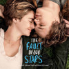 ALL I WANT (The Fault In Our Stars OST) Cover