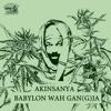 Akinsanya Babylon Wah Gan G Ja [junior Wize Production 2014] Mp3