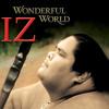Israel Kamakawiwo'ole - Somewhere Over The Rainbow /  What A Wonderful World (Cover)