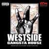 SP Records Album Release Nov. 28: ** West Coast G-House ** 1st Song