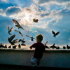 Freedom of Childhood