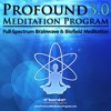Profound Meditation Program 3.0 (Tier 2 Track 1)