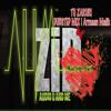 Tu Zaruri (Armaan Malik /Toshi - Sharib ) Melodic Dubstep Remix by AUM