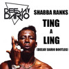 Shabba Ranks - Ting a Ling(Deejay Dario RE-FIX)SUPPORTED BY NICKI MINAJ The Pinkprint Freestyle