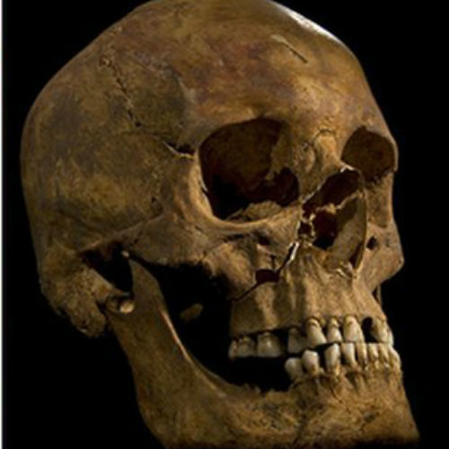 King Richard III remains found scientists say  YouTube