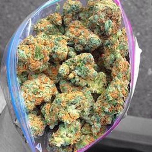 Amazoncom weed bags
