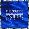 The Sounds - Hurt The Ones I Love (Felix Lineau Remix)[Extended DJ Mix] MP3