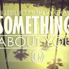 Villebillies - Something About You Ft. Shevy Chase