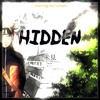 Hidden (Somewhere Only We Know)
