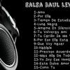 Salsa Baul Leve 1