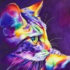 SpacenoiZe EP 2 Tracks Of  XnoiZe Vs Space Cat - [FREE Music Download Soundcloud]