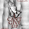 YL - I Cant Give Up