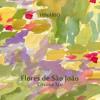 Cristina Tati - 69  Força De Folha - Flores de  São João
