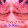 salt and pepper - digitalitar  Музика новинки