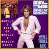The Clash vs. Andy Gibb - Should I Stay Or Should I Shadow Dance???(WhiLLThriLLMiX)