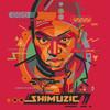 DJ Shimza - Akulalwa Ft Dr. Malinga(Original Mix)