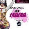 David Guetta, Nicki Minaj & Afrojack VS JakeSgarlato VS Ger3to - Hey Mama (Dj NoxX Mashup)