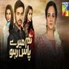 Tum Mere Paas Raho - HUM TV Drama Serial OST