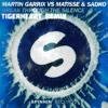 Break Through The Silence (TigerHeart Remix)