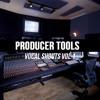 2Be Crazy Presents Producer Tools Vocal Shouts Vol 1 DEMO