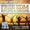 350+ FREE EDM Big Room Tuned Kick Samples & Drops + MIDI Loops (W. A. Production)
