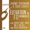 Elevation (Radio Slave's Panorama Garage Remix)