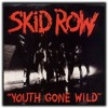 Skid Row - Youth Gone Wild (Cover By Wellington Oliveira)
