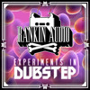 Experiments In Dubstep from Rankin Audio (295 samples)