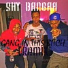 Shy Bangaa Gang In This Bitch {lil Bibby}remix Mp3