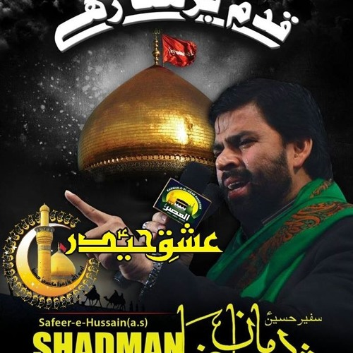 Shadman raza nohay 2013 audio download || Dsl manager download
