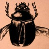 gregor samsa 2 Gregor samsa is now at once archetypal and individual, and he serves as a more convincing symbol because of the physical credibility, through situation in a realistic, physical world, of the transformation which he undergoes.