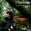 Promises (诺言) - LUHAN (鹿晗)