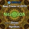 Mesibatube's Best tracks Of 2015 - NitzhoGOA mixed by Shivax and Agneton