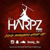 DJ Harpz DBS - 2015 Bhangra Wrap Up