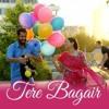 Tere Bagair | Amrinder Gill | Channo Kamli Yaar Di